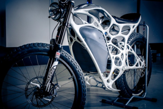 A complex, biologically inspired motorcycle frame.